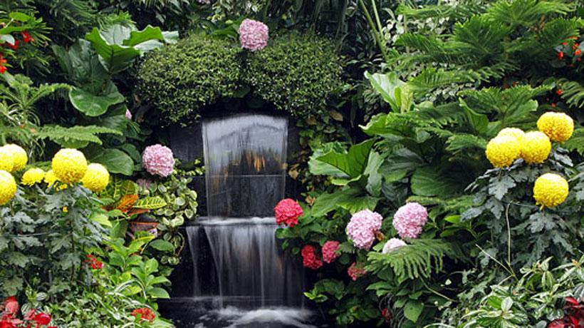 Jardim estimula os cinco sentidos