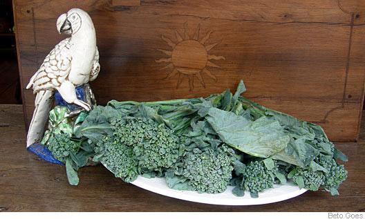 brócolis comum