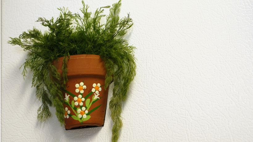 Vaso com folhagem pendurado na parede