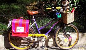 Acessórios fofos para bike