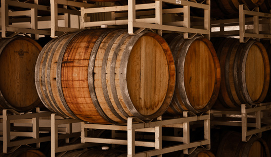 barris de madeira em adega