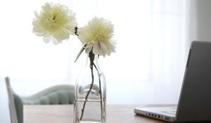 6 dicas de decoração que trazem boa sorte à casa