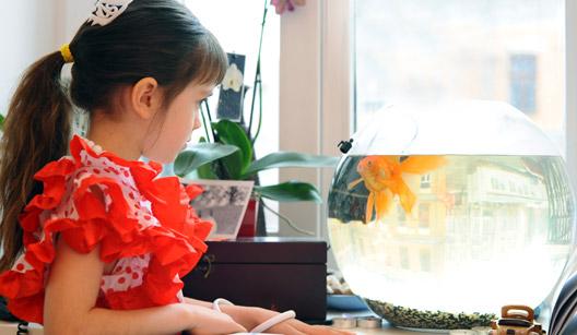 Menina olhando aquário