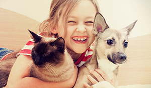Como evitar bactérias em casa com PET