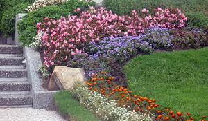 Jardim de Rocaille