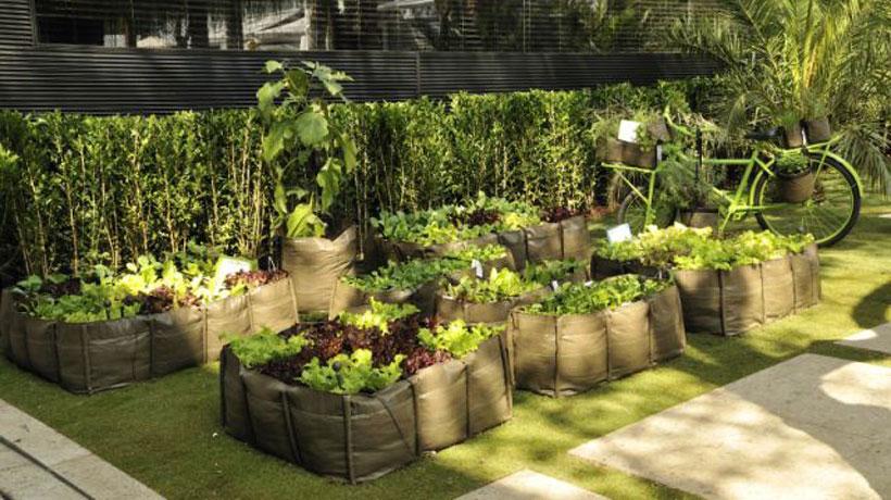 Recipientes para cultivar plantas