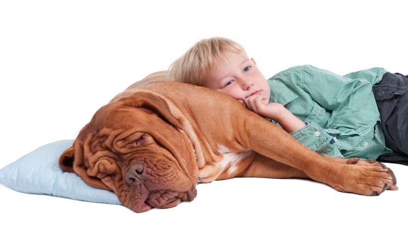 Criança deitada em cima de um cachorro