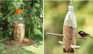 Como atrair passarinhos reutilizando materiais