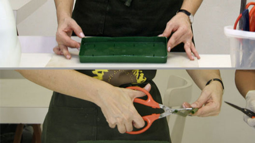 Preparação da base do arranjo