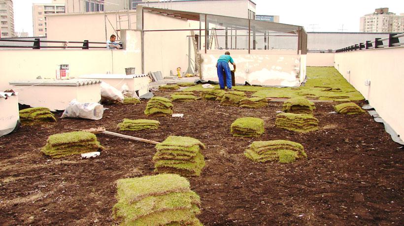 Implantação de telhado verde