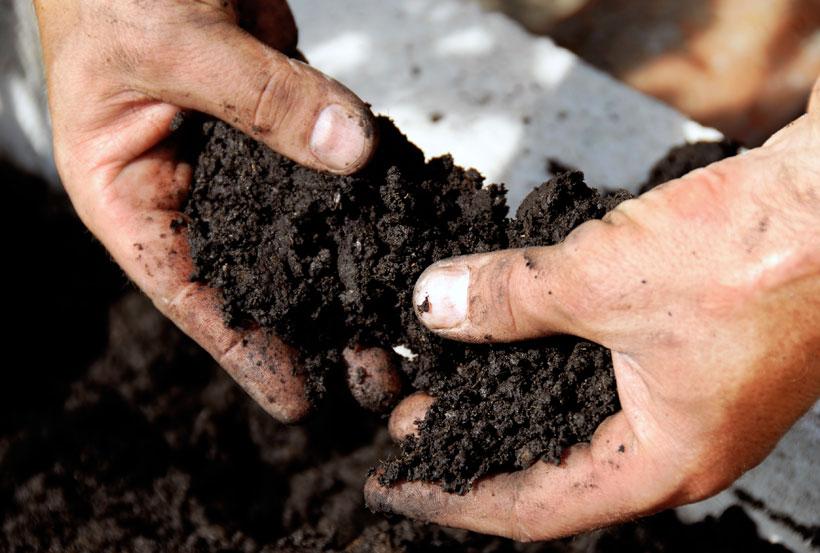 Homem segurando terra nas mãos