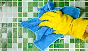Como evitar mofo e bolor no inverno
