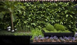 Jardim contemporâneo na Casa Cor