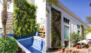 Jardim vertical em casa