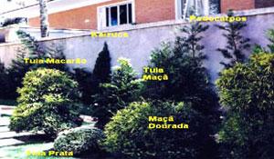 Um jardim sem idade
