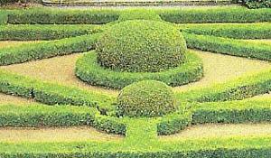 A historia dos jardins