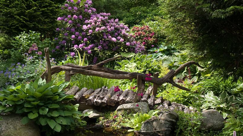 Ponte em jardim