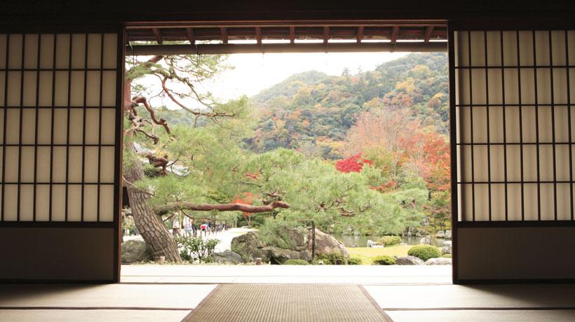 Jardim Japonês e seus mistérios